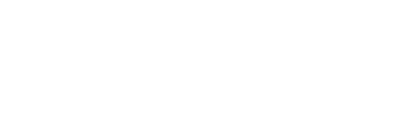 Priority Life Logo White
